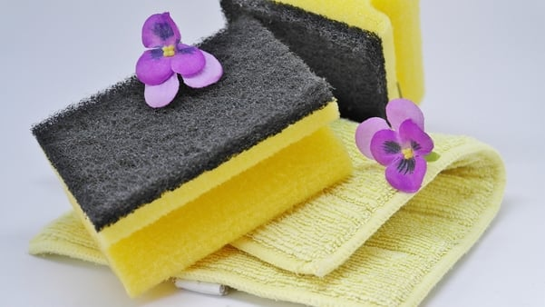 house cleanign sponges